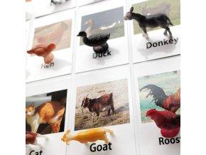 Výukové kartičky ANIMALS