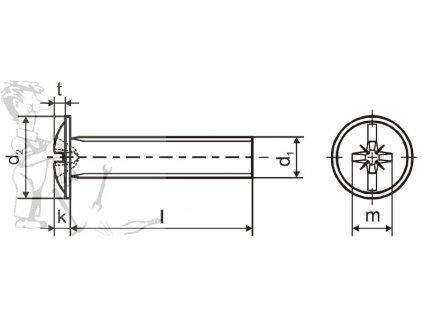 Šroub okrasný M 4 x 25 ZN