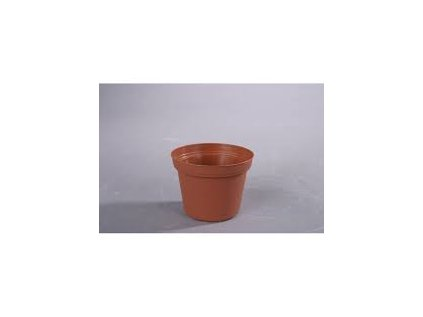 Květ. d 12 cm
