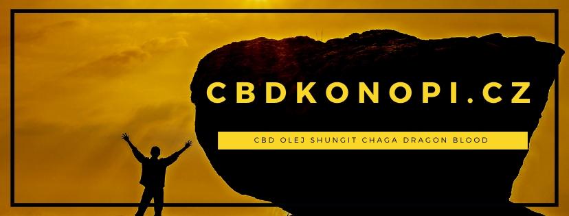 CBD olej a shungit