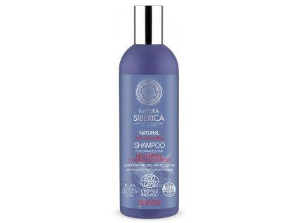 Shampoo AntyPollution 270ml