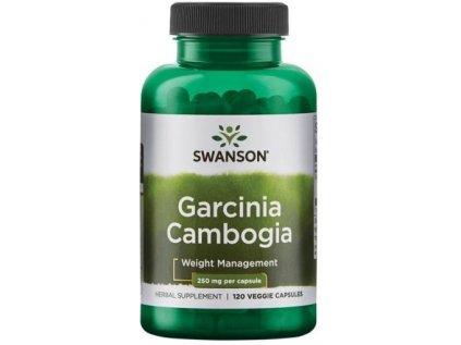 Swanson Garcinia Cambogia 250 mg, 120 rostlinných kapslí