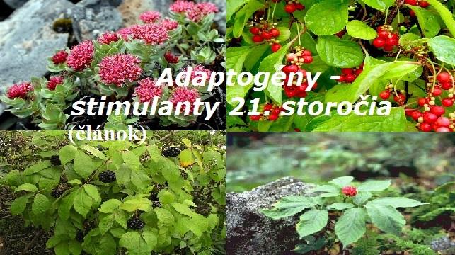 Adaptogény - stimulanty 21. storočia