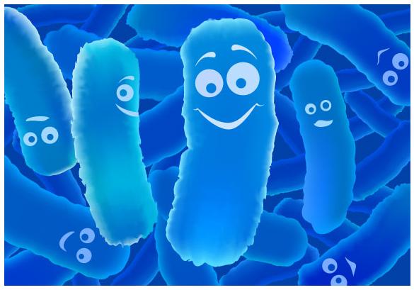 Pomôžte si pri chudnutí baktériami!