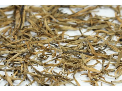 Golden Needles Mt. Kenya 2020