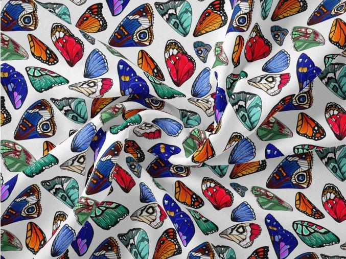 38 motýl bílý