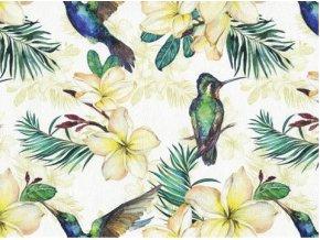 Koženka s potiskem kolibřík