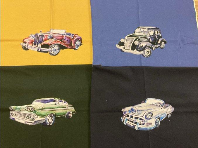 Panel auto