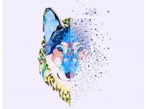 Panel Vlk abstrakce