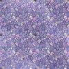 Úplet kvítka na fialové