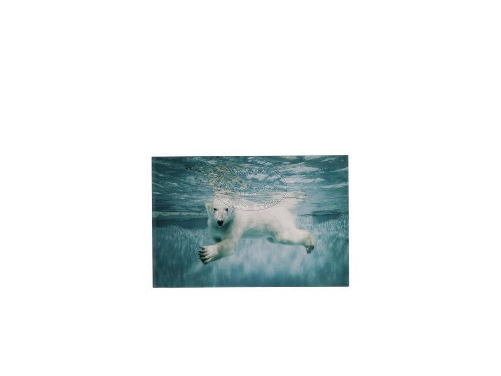 Obraz skleněný POLAR BEAR S