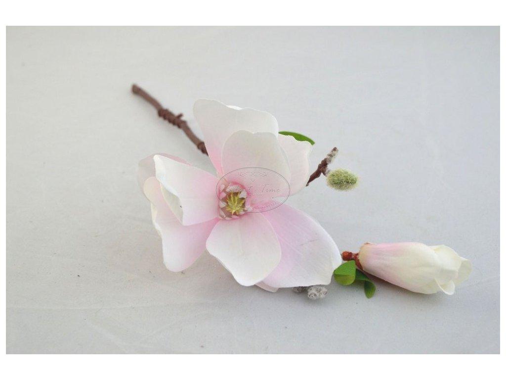 Magnolie květ
