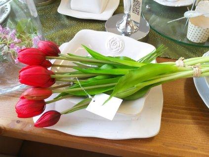 Tulipány exklusiv červené