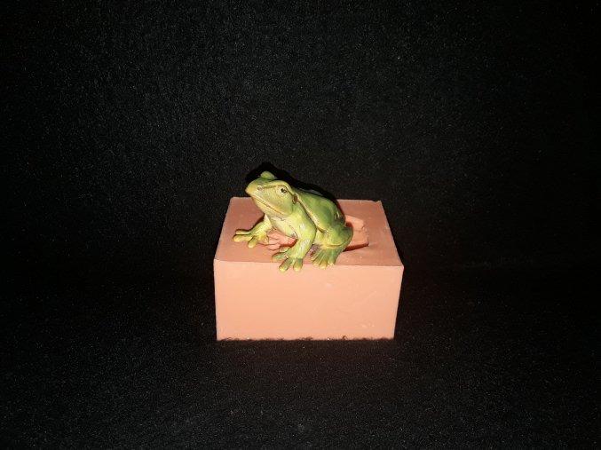 Silikonová formička žába 3187