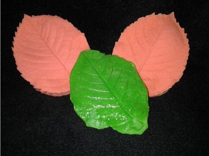 Silikonová formička žilkovač  list růže 4011