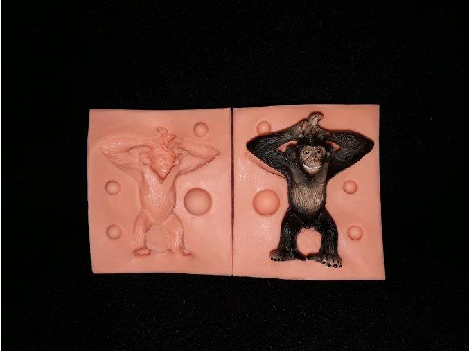 Silikonová formička šimpanz 3232