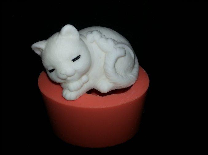 Silikonová formička kočka na polštáři s myškou 3073