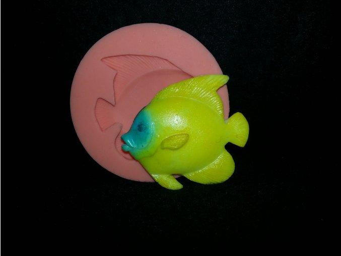Silikonová formička rybička baculatá 2097