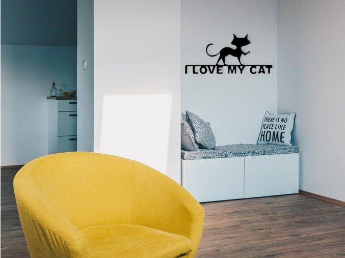 kovovy-obraz-i-love-my-cat