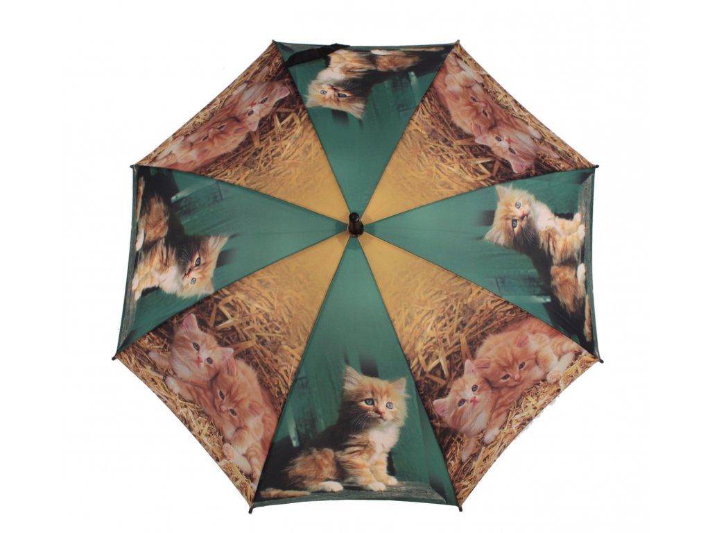 Dětský holový deštník Kočky