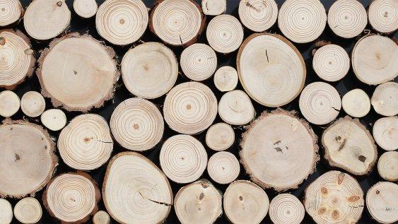 Dřevěný obklad PURE