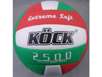 volejbal school 2500