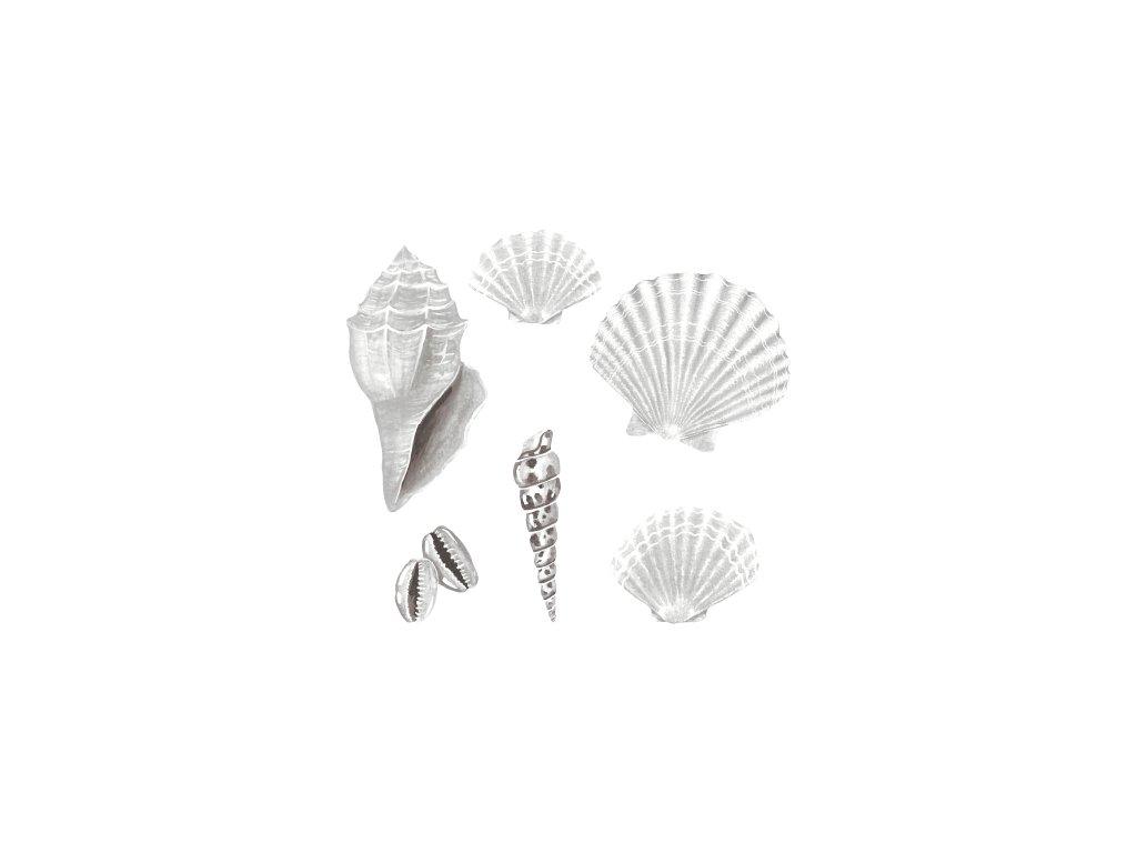 Wallstories Seashell white 500x500