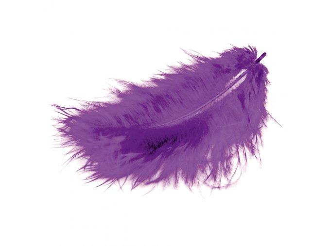 Flaušová peříčka - fialová