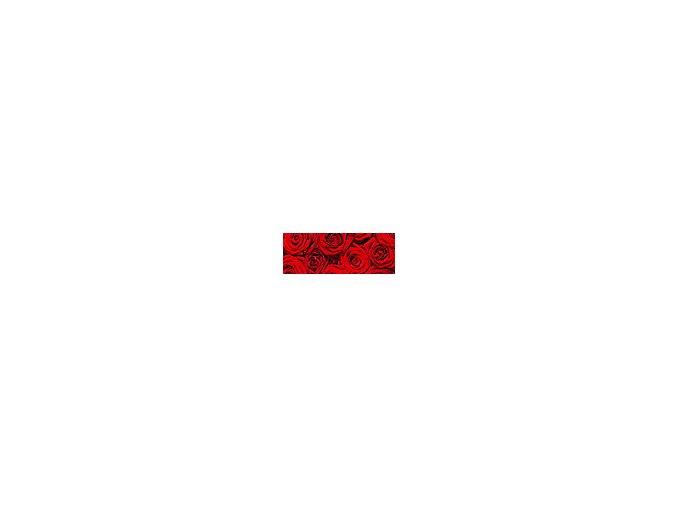 Motiv transparentní papír 50 x 70cm - Růže, 115g