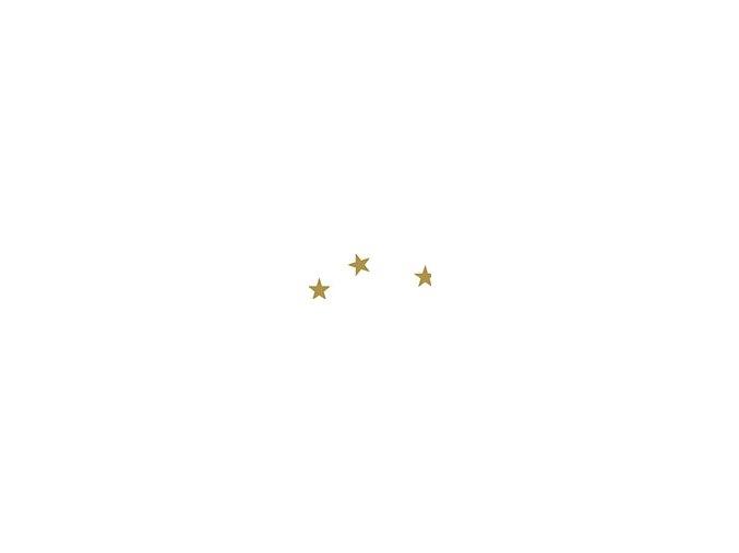 Motiv karton - Hvězda bílý 300g