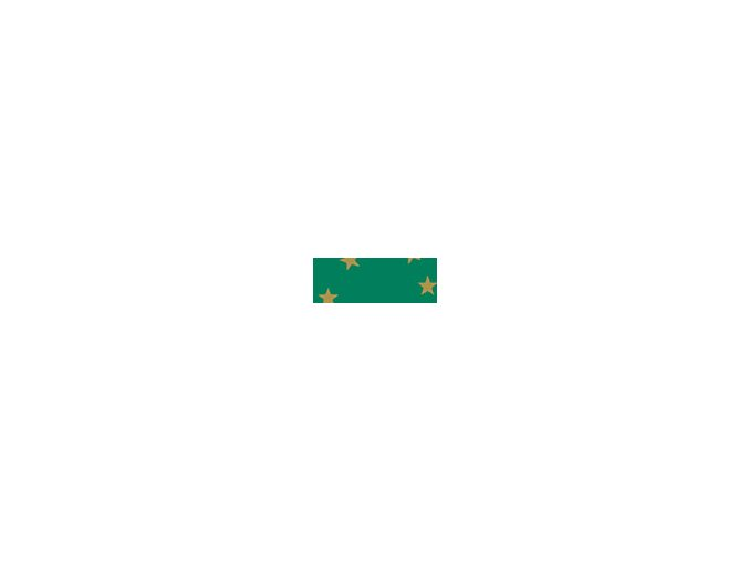Motiv karton - Hvězda zelený 300g