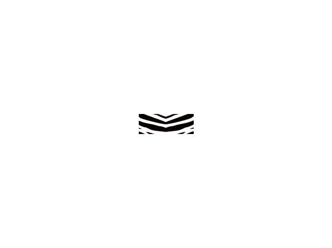 Motiv karton - Zebra 300g