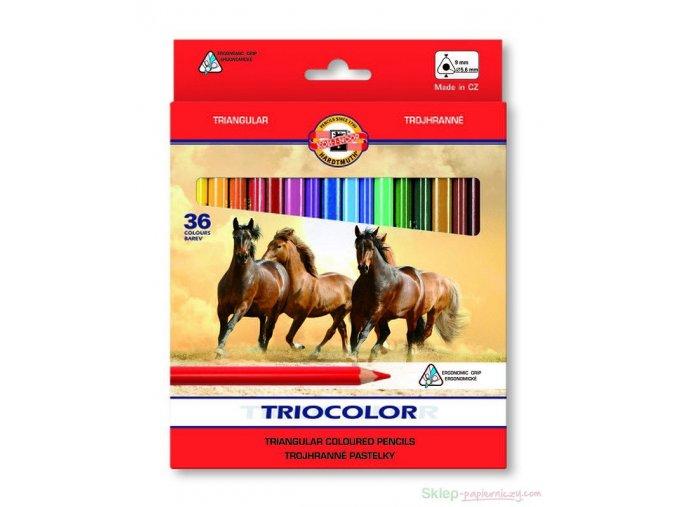 Sada 36 školních pastelek TRIOCOLOR Koh-i-noor