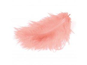 Flaušová peříčka - růžová