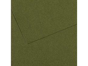 Pastelový papír 160g - č.448  Zeleň tmavá