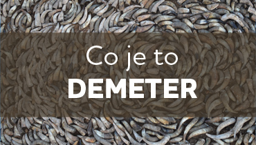 Co je to DEMETER
