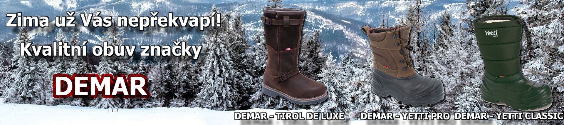 demar_zima