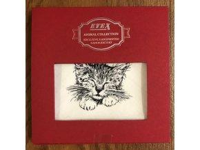 kapesník dámský kočička