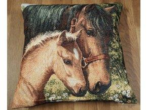 povlak kůň
