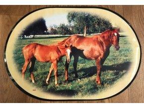 Prostírání - kůň