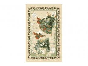 14812 uterka ptacci jpg 1