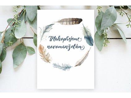 Přání Blahopřejeme novomanželům