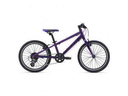 Giant ARX 20 M21 (Barva purple)