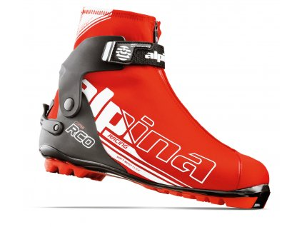 Alpina 51671 rcombi skiexpert