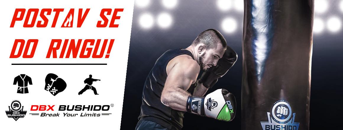 BUSHIDO - Postav se do ringu!