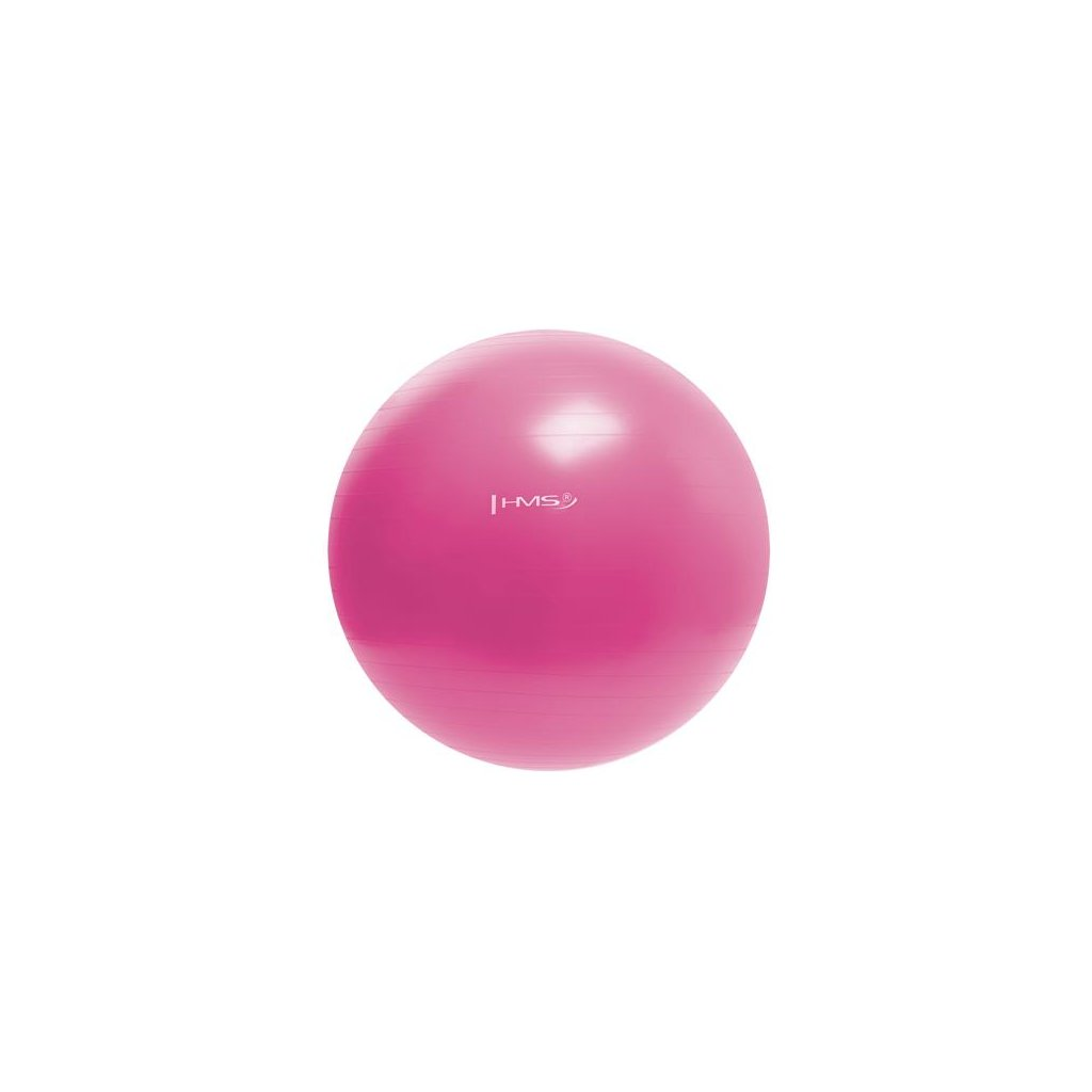 Gymnastický míč HMS YB01 55 cm, růžový