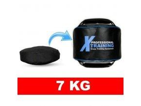 Náplň pro kettlebel DBX BUSHIDO XBAG 7 kg