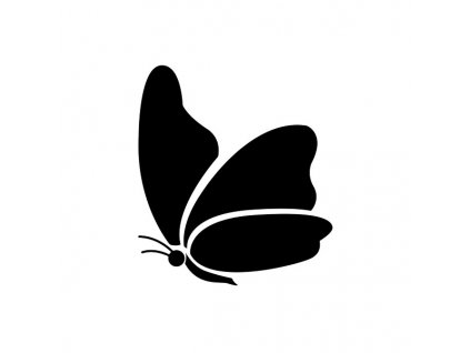 1223 motýl 0