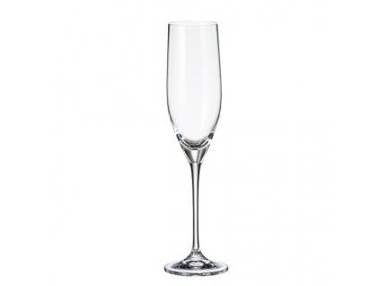 crystalite bohemia sklenice na sekt sitta 240 ml