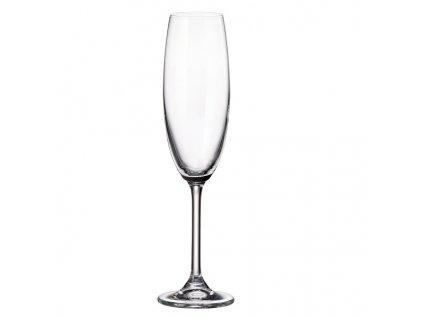 crystalite bohemia sklenice na sekt colibri 220 ml 2